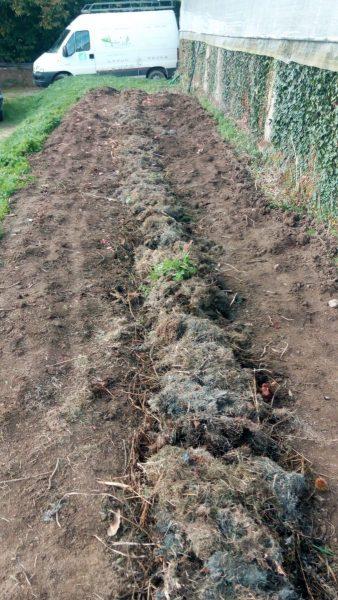 Permaculture ferme exploitation maraichère