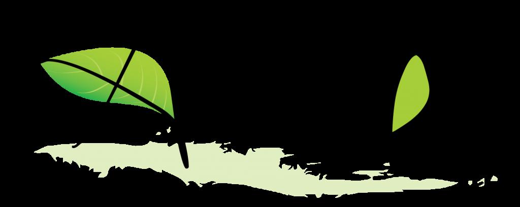Arôm'éthic maraîcher biologique