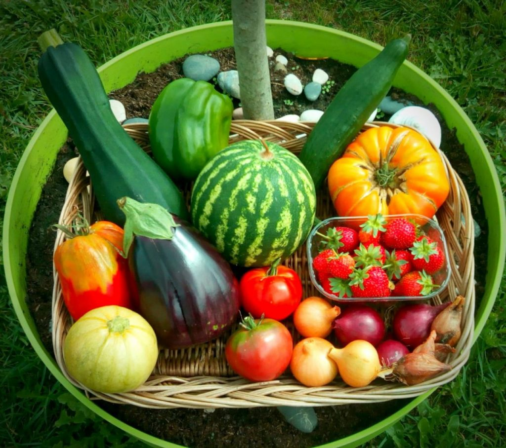 panier légumes fruits bio