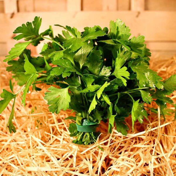 bouquet persil plat bio commande en ligne panier local